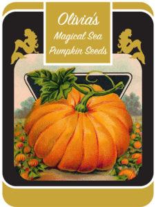 Olivia's Magical Sea Pumpkin Seeds